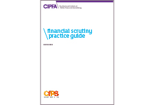 Financial scrutiny practice guide